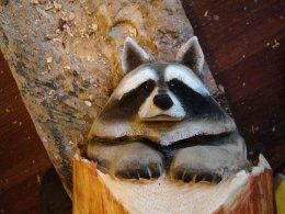 final work of raccoon wood carving by chainsaw